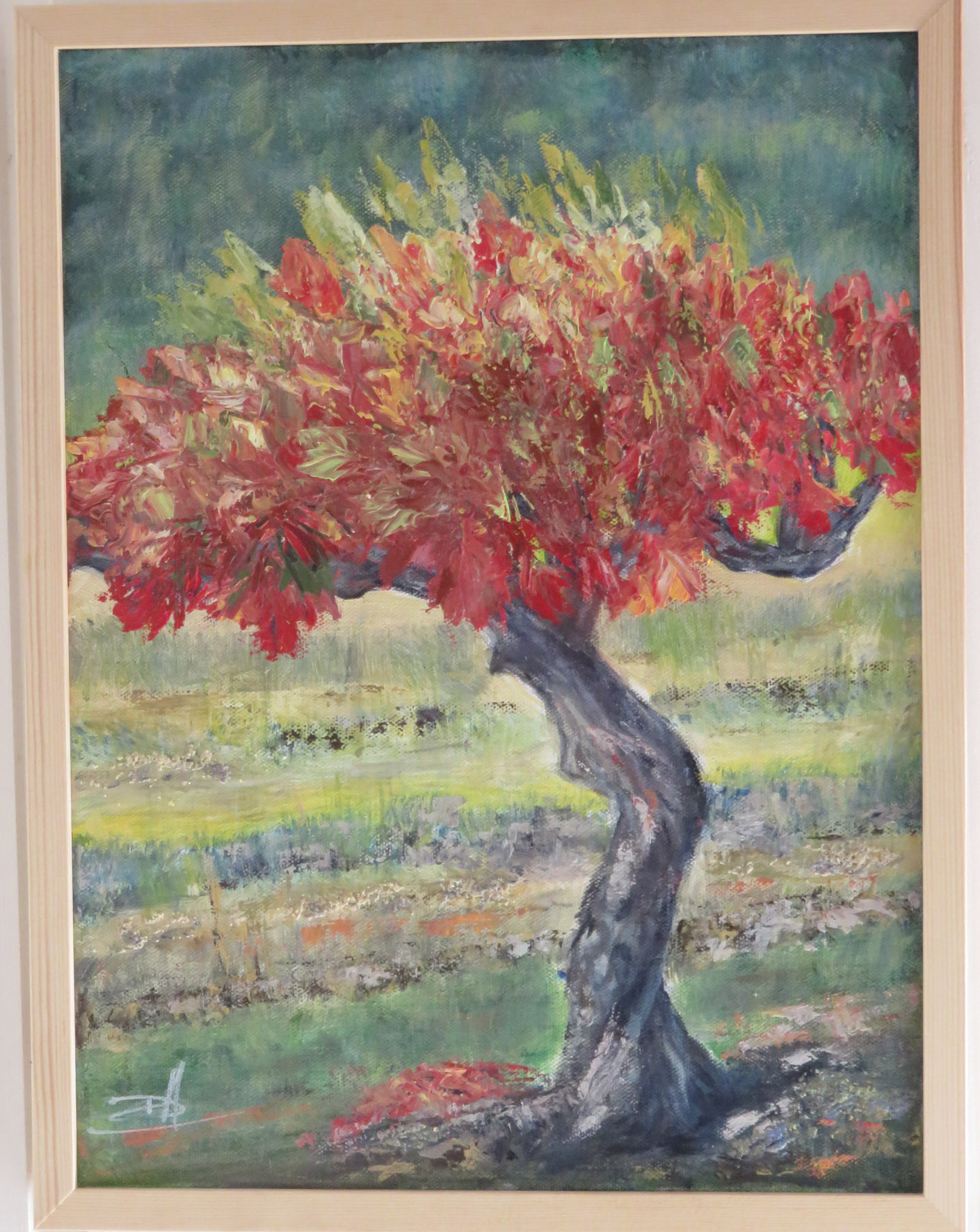 vigne cevenole Nov19